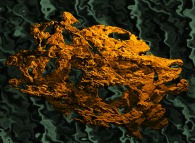 Tridimensional representation of a fractal quadridimensional Calabi-Yau manifold -a Tribute to José Hernández-