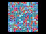 A random permutation of pixel blocks of a bidimensional field