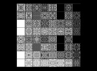 64 elementary bidimensional binary cellular automata with 1 white starting central point