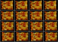 A set of 4x3 stereograms of a tridimensional fractal structure