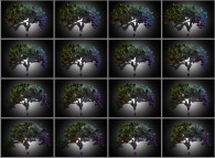 A set of 4x3 stereograms of a fractal-fractal tree