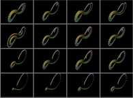 The Lorenz attractor -sensitivity to initial conditions (displayed as the central point of each frame)-