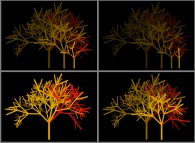 The self-similarity of a random bidimensional fractal tree