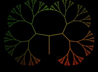 A binary tree with 256 leaves